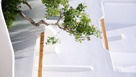 Cavo Bianco Santorini 52
